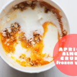 Apricot Almond Crunch Frozen Yogurt