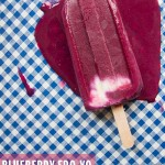 Blueberry Froyo Ice Pops
